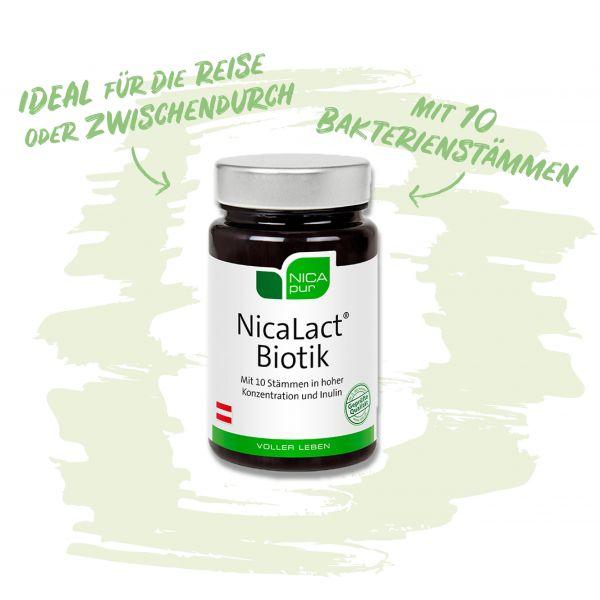 NicaLact Biotik - Bakterienstämme